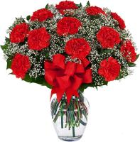 4476 - Red Carnations