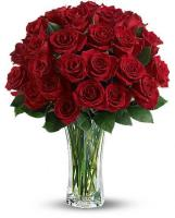 4623 - 24 Red Roses