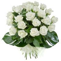 4626 - 24 White Roses