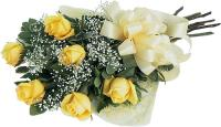 2529 - 6 Yellow Roses