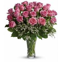 4624 - 24 Pink Roses