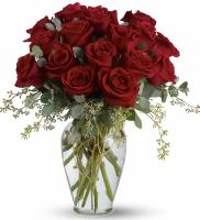 5160 - 16 Red Roses