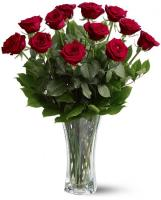 2545 - 12 Red Roses
