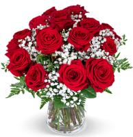 2550 - 15 Red Roses