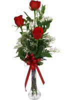 2768 - 3 Red Roses