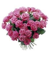 2764 - 30 Pink Roses