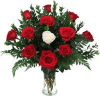 2817 - Valentine Roses